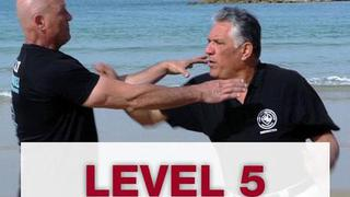 Self Defense Maor : Level 5, T4 - DE