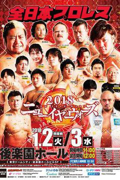All Japan Pro Wrestling 2018 New Year Wars