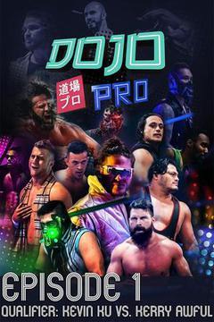 Dojo Pro: Episode 1