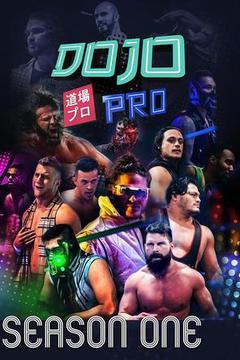 Dojo Pro: Season 1 (12 Episodes)