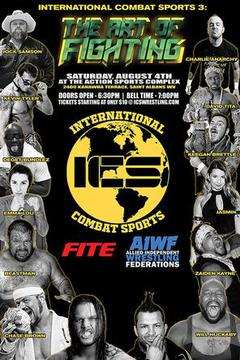 International Combat Sports 3: The art of fighting (Tape Delay)