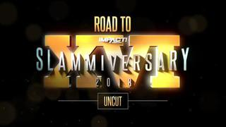 Road to Slammiversary XVI