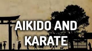 AIKIDO AND KARATE DOCUMENTARY