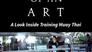 Study Of An Art - A Look Inside Training Muay Thai | Ryan Jones Films