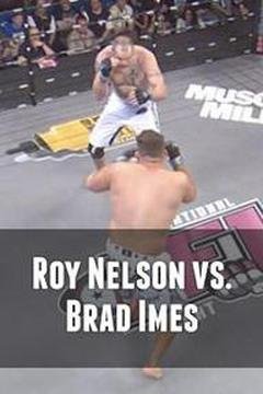 Roy Nelson vs. Brad Imes