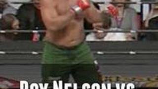 Roy Nelson vs. Antoine Jaoude