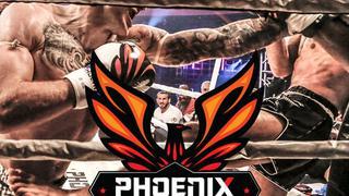Phoenix Fighting Championship 4