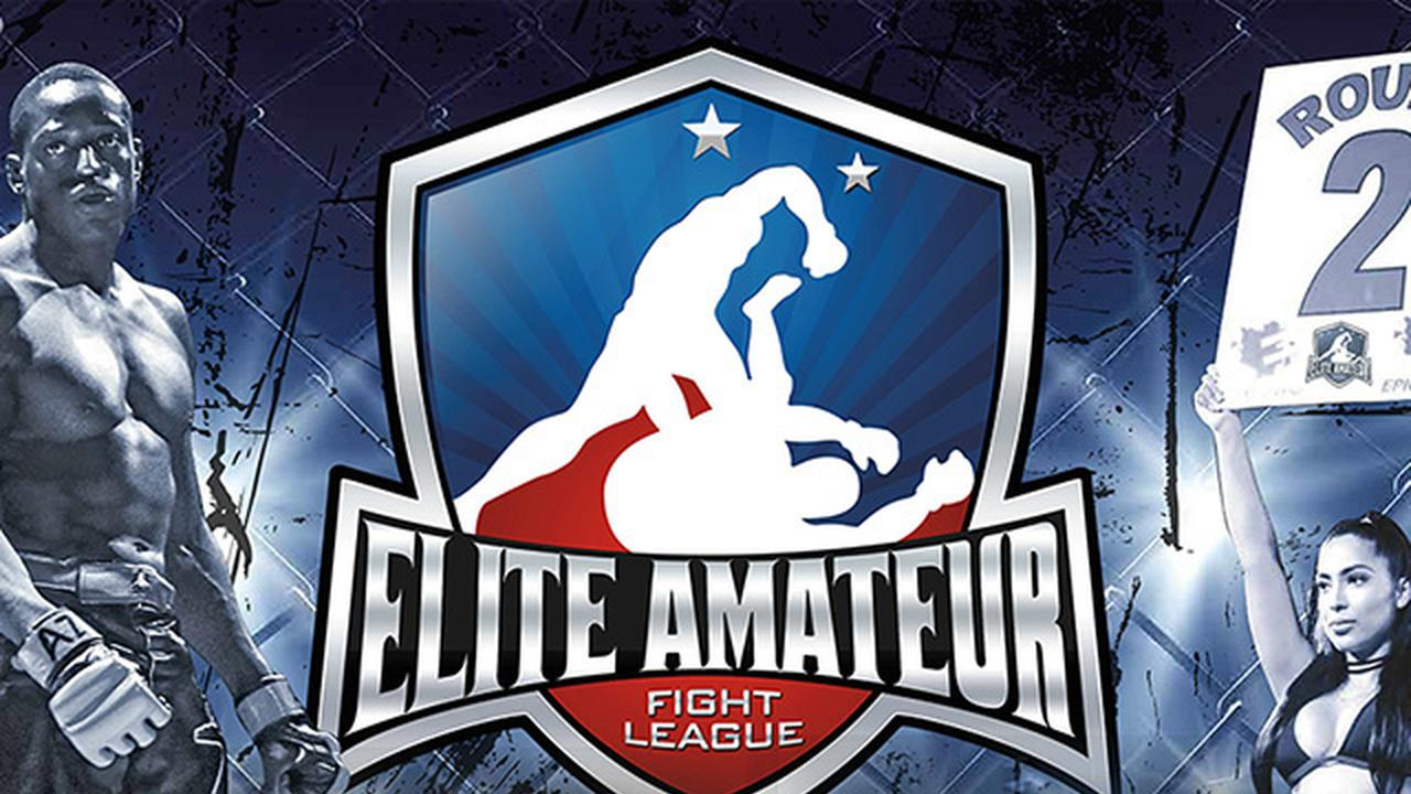 Elite Amateur Fight League, Season 3, Illinois vs Indiana