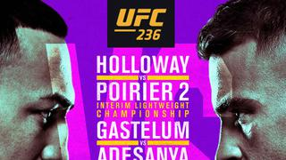 UFC 236: HOLLOWAY VS POIRIER 2
