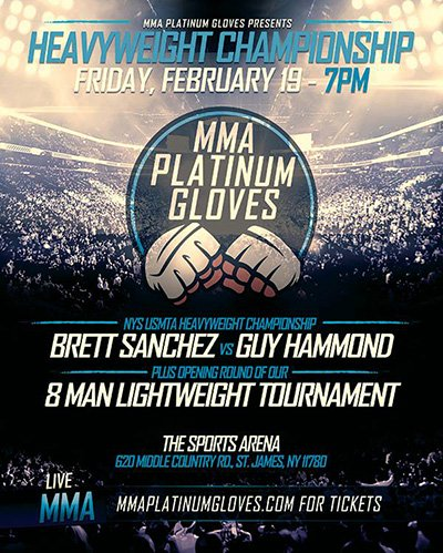 PlatinumGloves_Poster_400